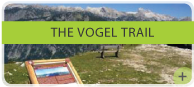 The Vogel trail
