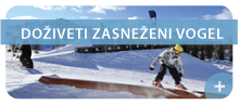 vogel-bohinj-ski-center.png