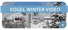 vogel-winter-video.png