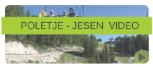 vogel-bohinj-video.png
