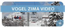 vogel-zima-video.png