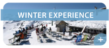 Vogel winter experience