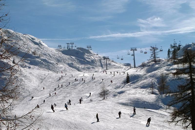Ski Resort Vogel Bohinj Facts And Figures