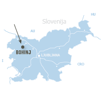 Vogel Bohinj map