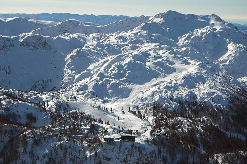 Vogel skiing